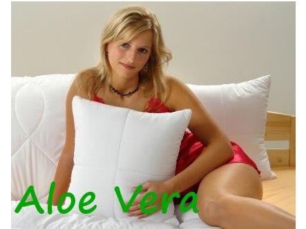 Brotex Písek Polštářek Aloe Vera 30x40cm se zipem