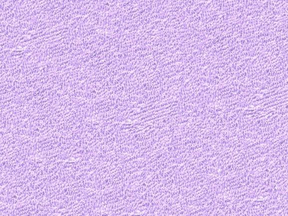Brotex Písek Froté prostěradlo 80x200 cm, světle fialové